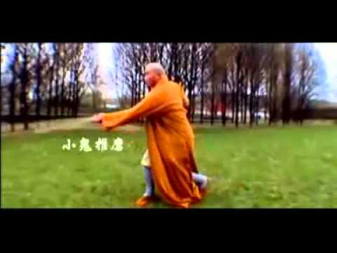 Real Shaolin Martial Arts by Shi De Cheng