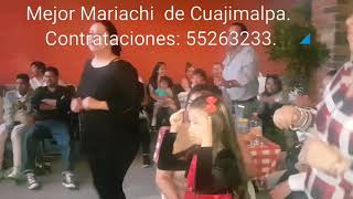 El mono de alambre - Mariachi contra mi abuelita que no se raja jejeje - Contrataciones 55263233.