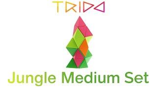 Trido Jungle Medium Set - How to build a Tower
