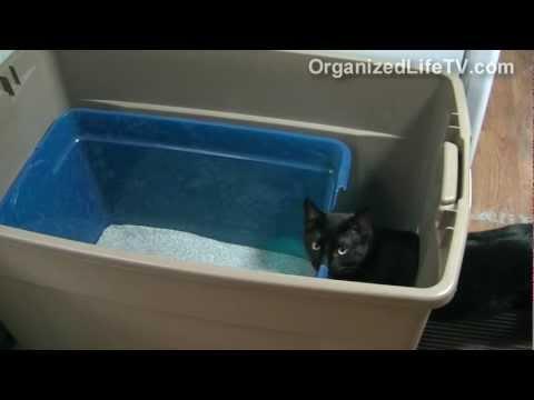 Custom Cat Litter Box Made Simple - DIY