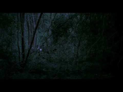 Uncle Boonmee Who Can Recall His Past Lives - Apichatpong Weerasethakul - trailer