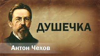 Антон Чехов Душечка Аудиокнига Онлайн Русская литература (книга чтение, школа)