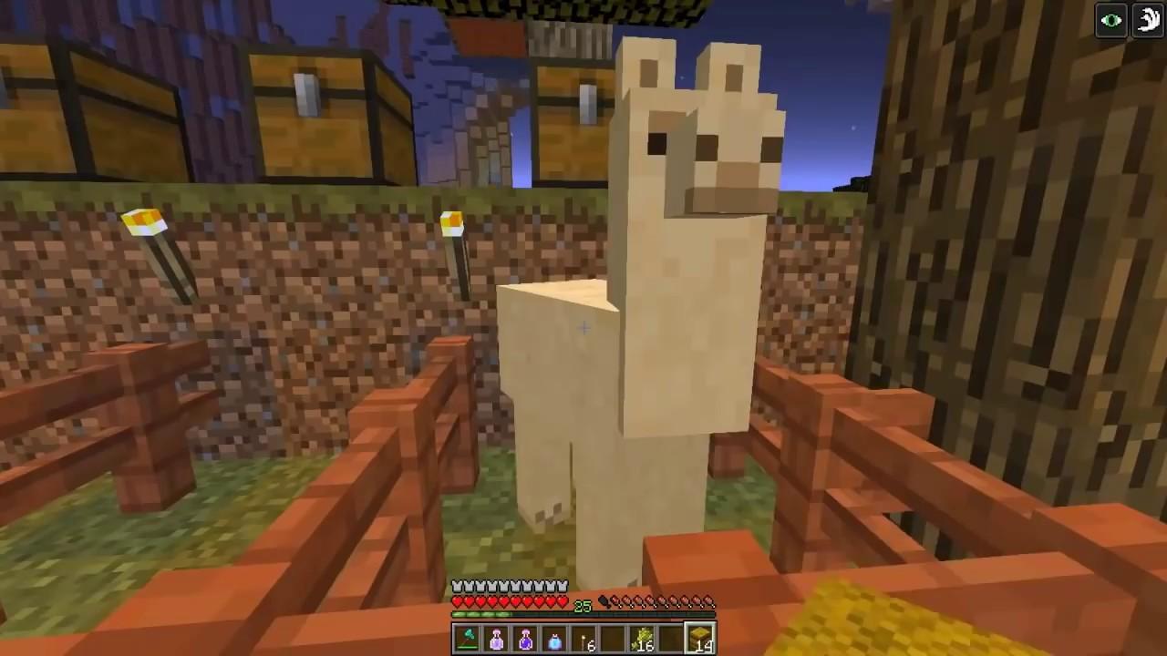 Que Comen Las Llamas En Minecraft 111  YouTube