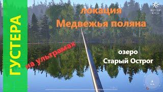 Русская рыбалка 4 - озеро Старый Острог - Густера трофейная на ультрамах
