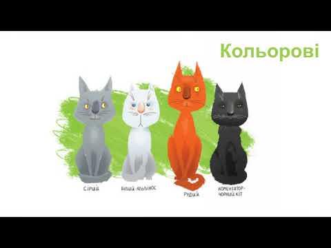 Буктрейлер 36.6 котів