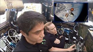 大西宇宙飛行士長期滞在活動報告(Vol 35) ISSでの仕事を紹介