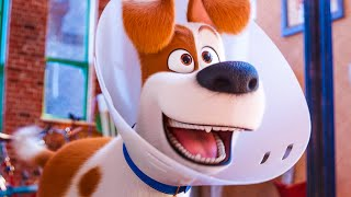 Max And Duke Go On A Roadtrip - THE SECRET LIFE OF PETS 2 Trailer (201