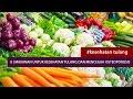 Dokter 24 : Makanan Untuk Kesehatan Tulang Dan Mencegah Osteoporosis
