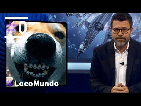 Locomundo: Tendemos a humanizarlas - Mascotas | #0