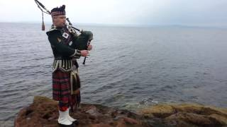 Scottish Highland Piper 3199