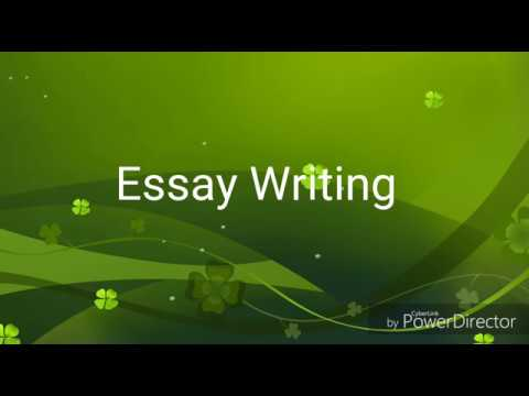 Essay Writing | Vacation Homework