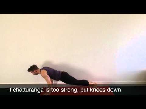 Forrest Yoga Asana - Classical Suns Alternating with B - Series