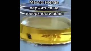 Фото #пранк#эдвардбил#смешноевидео#кот#юмор#смех#квн#камеди#чёрныйюмор#прикол#котята#тикток#tiktokприколы