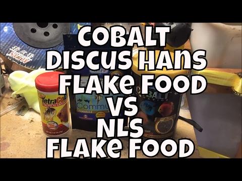 Cobalt Discus Hans Flake Food Vs New Life Spectrum Flake Food Water Change Wednesday Update