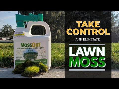 Quick And EASY | How To GET RID Of Moss In Your Lawn...For GOOD!