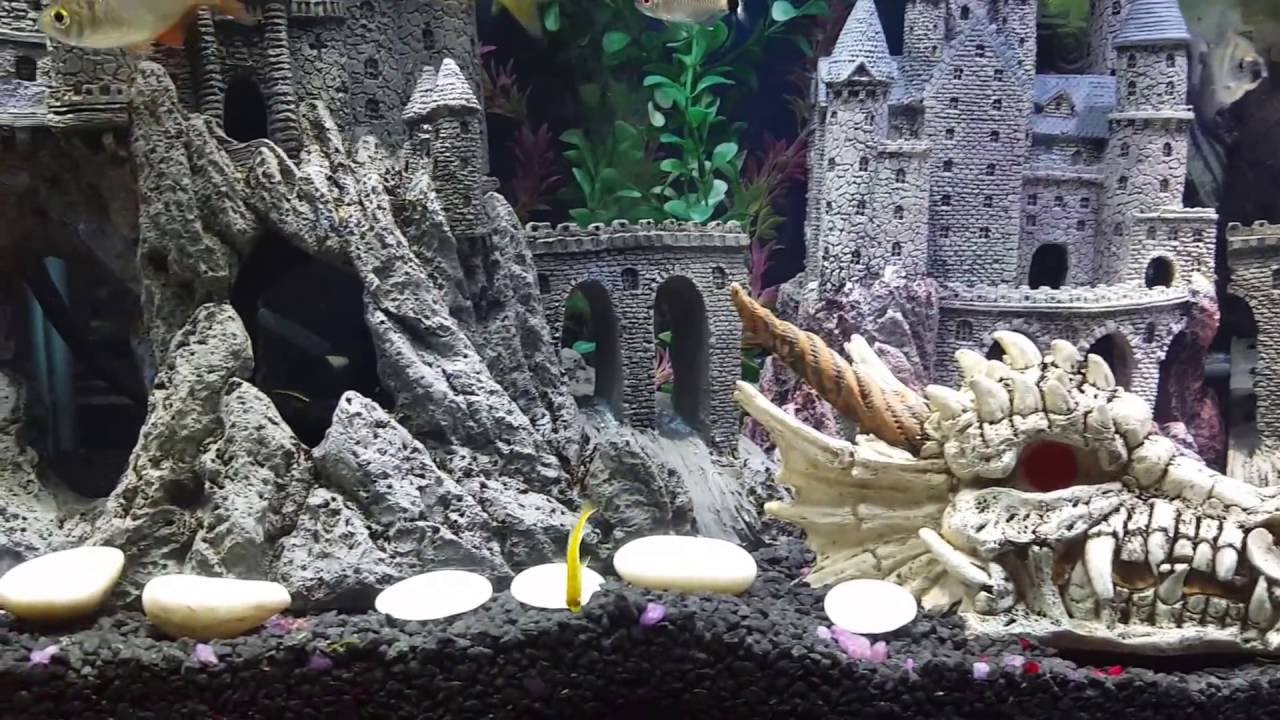 My game of thrones aquarium theme fish tank youtube for Decoration murale game of thrones