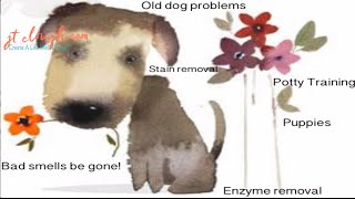 How To Remove Dog Pee (Urine), Puke, Odors and Stains from Carpet