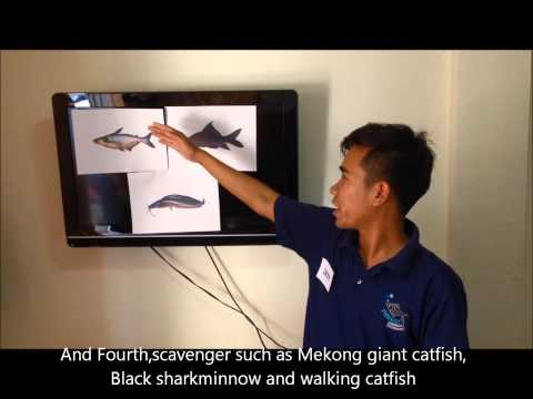 presentation about fishery science major