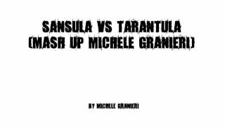Sansula VS Tarantula (Mash Up) - Michele Granieri