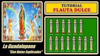 La Guadalupana (Tutorial Básico)