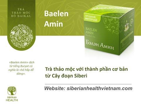 Trà thảo dược bổ phổi Baelen Amin của Siberian Wellness