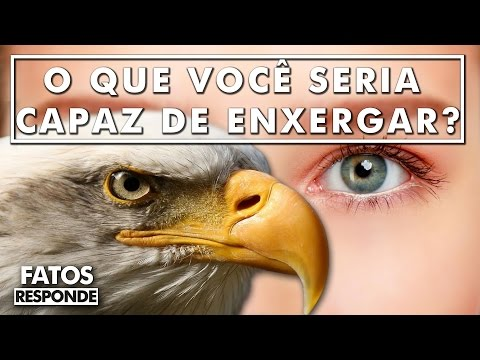 Como seria se os humanos tivessem olhos de águia?