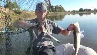 Рыбалка на Ахтубе 2014. Ловля судака, сазана, щуки...(Чаще всего под понятием: