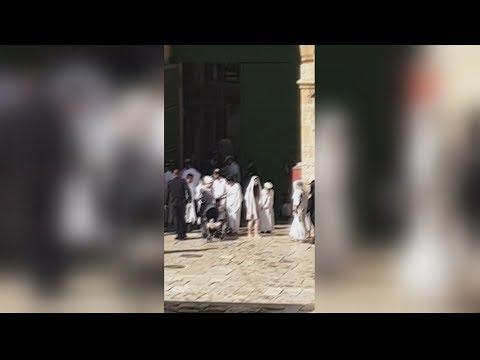 ???? عشرات المستوطنون يقتحمون #المسجد_الأقصى ويؤدون صلوات تلمودية في باحاته  - 11:54-2019 / 10 / 9