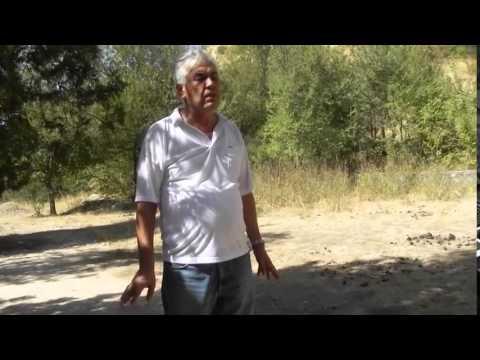Самые опасные змеи Таджикистана The Most Dangerous Snakes ...