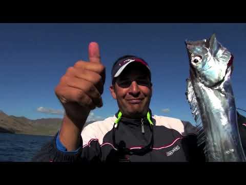 Lecciona in Diretta: Video di pesca Tubertini con Bramanti from YouTube · Duration:  17 minutes 21 seconds