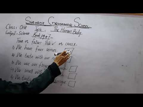 Class 1, Science lesson,  Topic: The human body,  page: 7