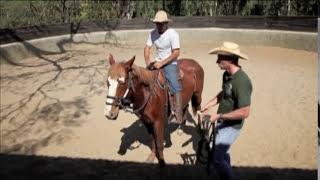 Encantadores De Vidas: Doma De Cavalos Selvagens Por Eduardo Moreira - Inédito No Brasil