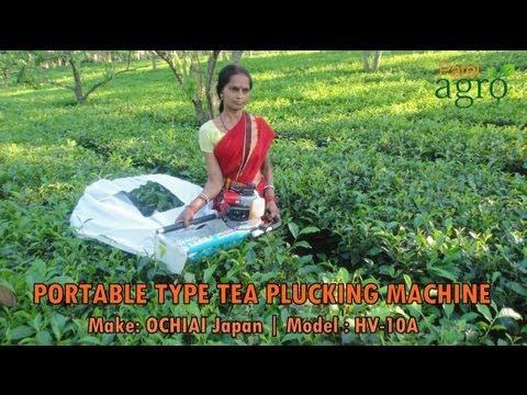 Tea Harvester Portable Type 410 mm - OCHIAI Japan (Operated by Women Worker)