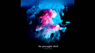 Watch Pineapple Thief Burning Pieces video