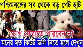 тЭдя╕ПржХрж┐ржЙржЯ ржХрзБржХрзБрж░ ржирж┐рждрзЗ ржЪрж╛ржЗрж▓рзЗ ржжрзЗржЦрзБржи | рж╕ржм ржерзЗржХрзЗ ржмрзЬ ржкрзЗржЯ рж╣рж╛ржЯ ржХрж▓ржХрж╛рждрж╛ LIVE (Largest Pet Haat in Kolkata)