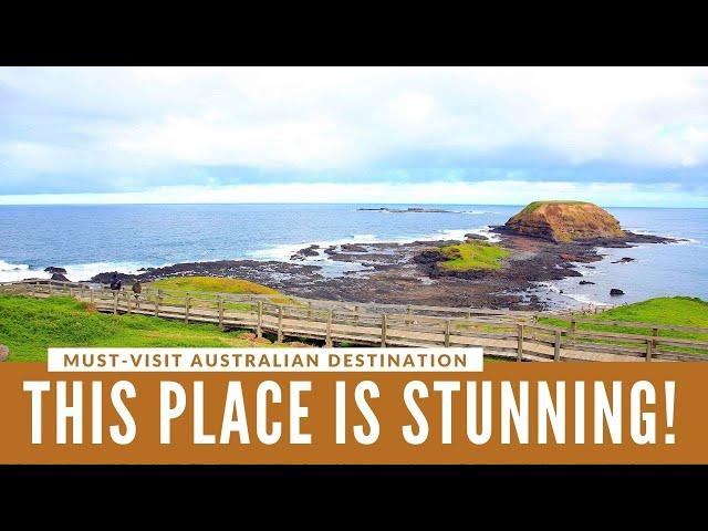 TRAVEL: Exploring Phillip Island