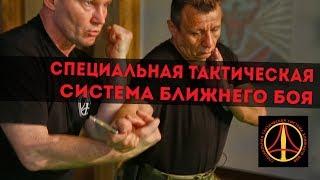 Специальная тактическая система ближнего боя Александра Михайловича Кистеня