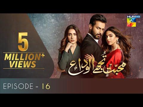 Download Mohabbat Tujhe Alvida Episode 16 | English Subtitles | HUM TV Drama 30 September 2020