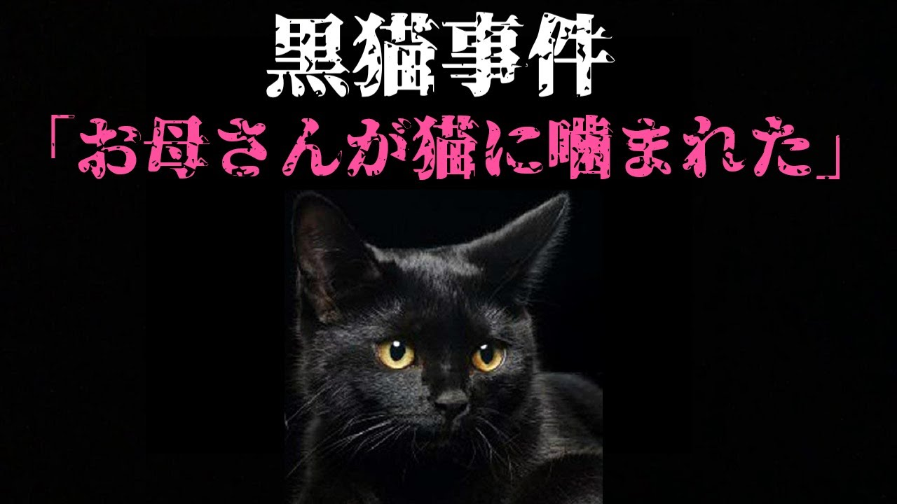【実話】9歳少女の不気味な証言 黒猫事件【佐賀県の怖い話】