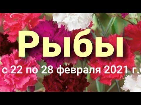 Рыбы Таро-гороскоп с 22 по 28 февраля 2021 г.