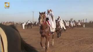 خالد الزنتاني فرسان اجواد