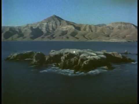 1982 Version of Treasure in the Sea