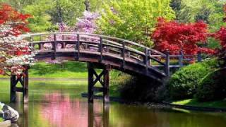 Debussy - Arabesque No. 1 (Music Box Classics Vol. 1)