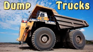 Dump Trucks | Huge Machines | Kids Video | Kids Music | Silly Bus
