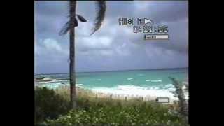 1997 - Bahamas sea and water animals