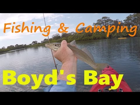 VLOG 10: Fishing And Camping Boyd's Bay, NSW