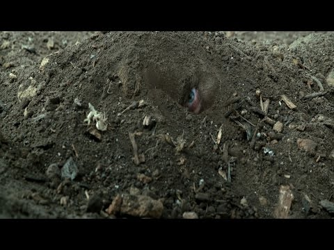 Hacksaw Ridge (2016) - Behind the enemy lines [1080p]
