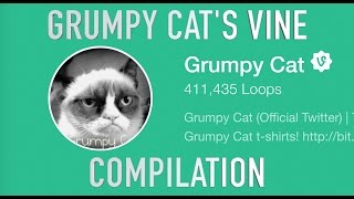 Grumpy Cat's Vine Compilation!