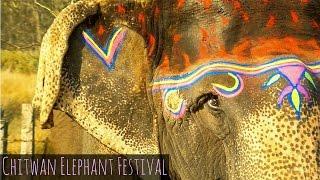 Download Video Chitwan Elephant Festival in Sauraha MP3 3GP MP4