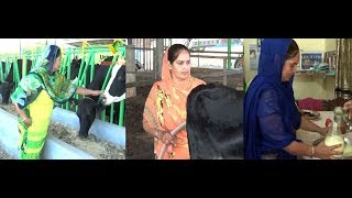 Kamal Preet Pabbyan teach to woman, how can they success in Dairy farming